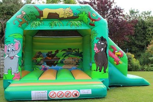 Jungle Slide Combi