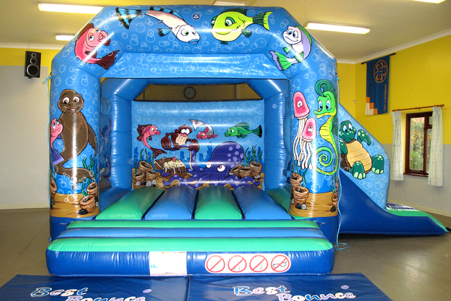 Seaworld Slide Combi Bouncy Castle