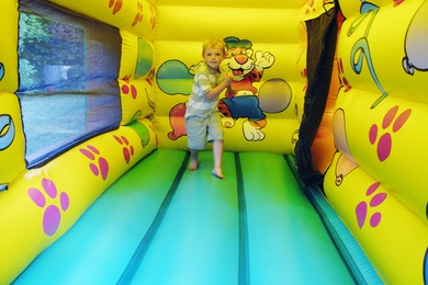 Inside Left Bounce & Ball Pond Bouncy Castle